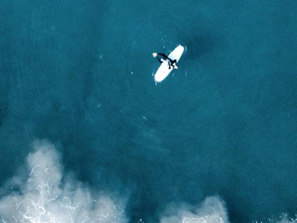 Ocean Mindfulness - A propos