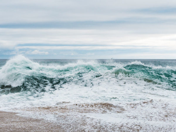 Ocean Mindfulness - Programme MBRP